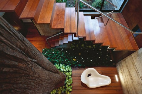 tree houses guatemala 5