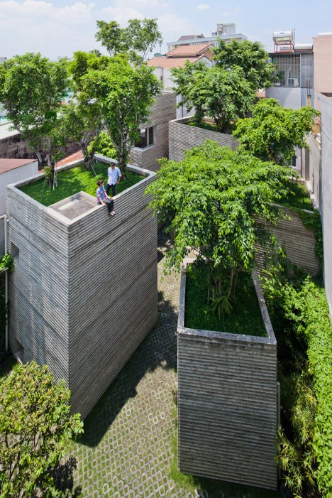 tree houses vo trong 2