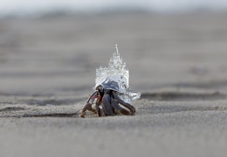 hermit crab castle