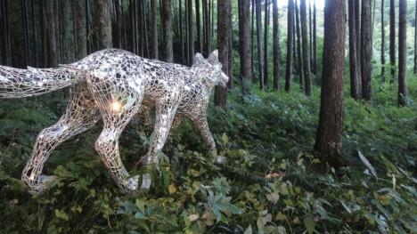 mirror wolf 4