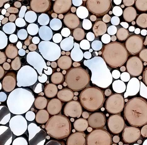 mirrors tree stumps 4