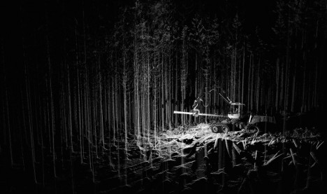 scanlab forest view