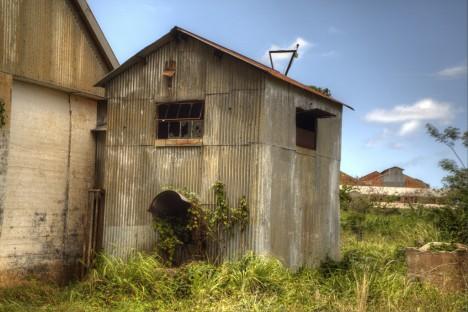 abandoned-sugar-mill-coloso-6