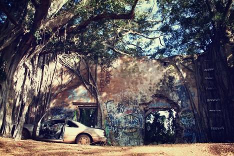 abandoned-sugar-mill-haiku-1
