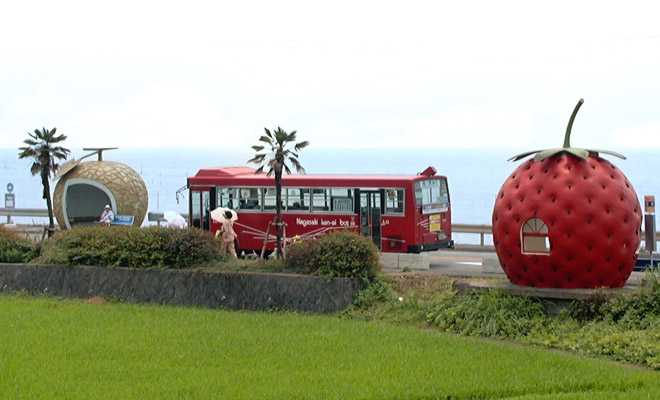 fruit-bus-stops-pair-1a