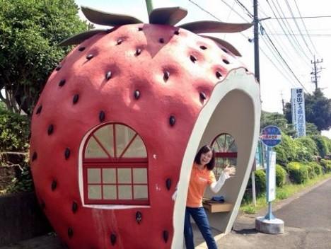 fruit-bus-stops-strawberry-5