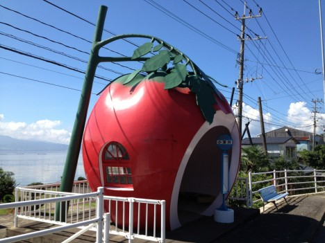 fruit-bus-stops-tomato-1c