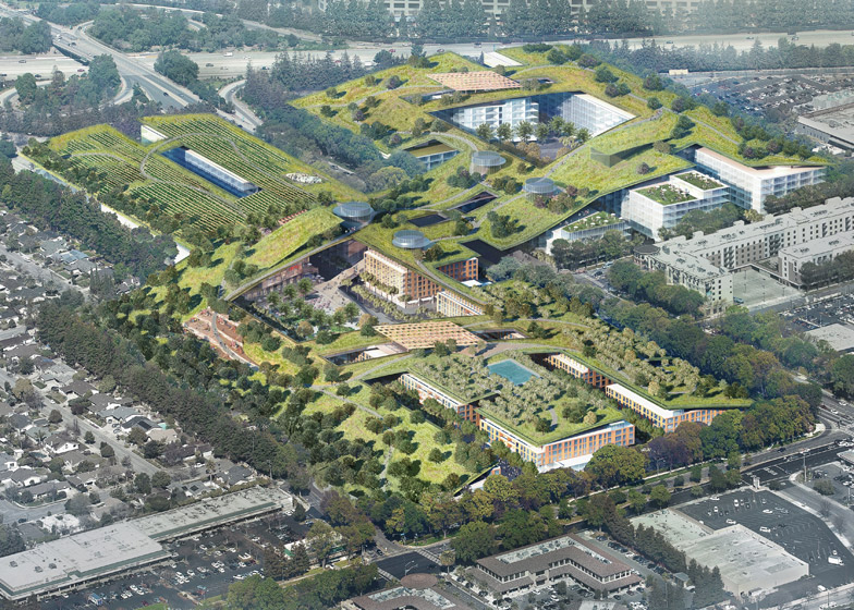 largest green roof
