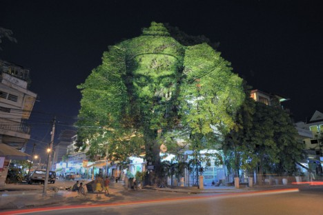 projection mapping trees 3