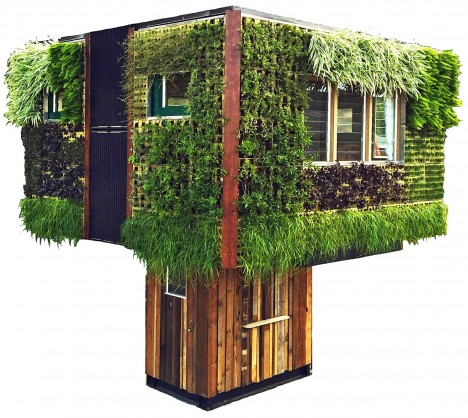 tree house living walls