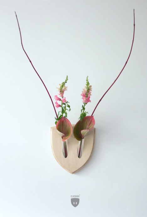wall mounted plant antlers