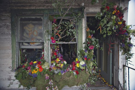 floral abandoned beauty