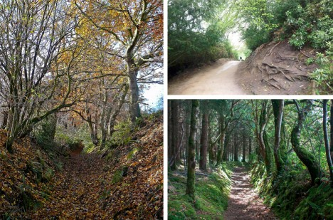 holloway paths