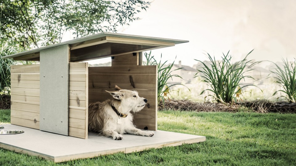 Puphaus meyou 2 designer dog cat houses for modern for Architecture and design dog house