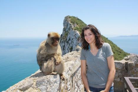 germiest-gibraltar-monkeys-2