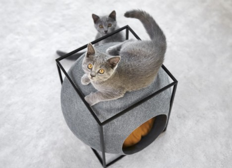 modernist cat bed