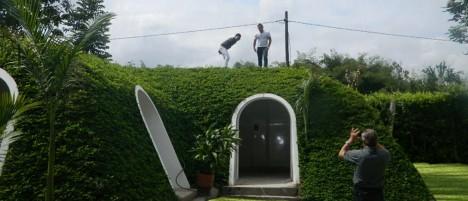 magic green house