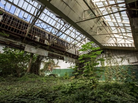 abandoned-tennis-court-3b