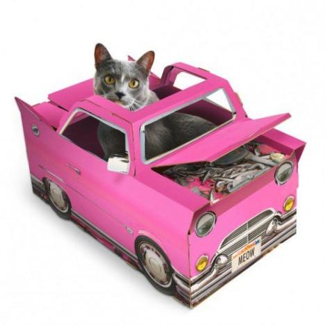 cat car playhouse