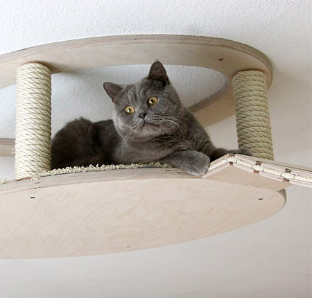 cat houses ceiling 5