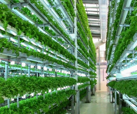 Veggie Factory: World's First Vertical Farm Run Entirely By Robots