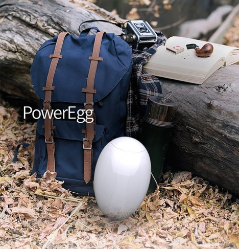 poweregg size