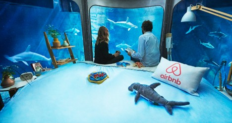 airbnb shark suite 3
