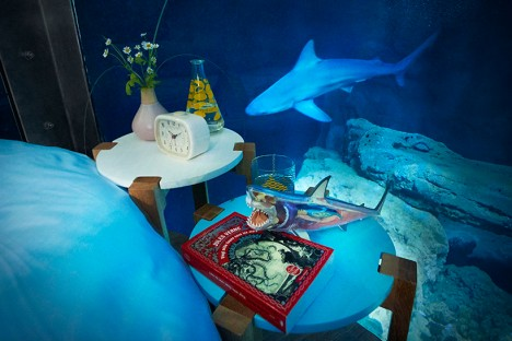 airbnb shark suite 6