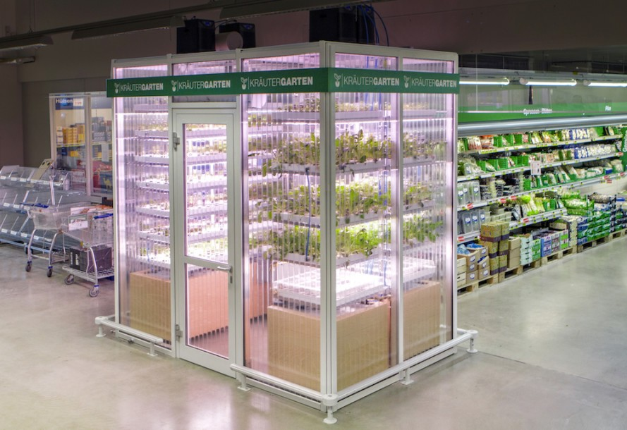 indoor farm grocery store