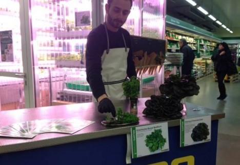 indoor grocery berlin greens