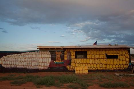 painted-desert-project-11d