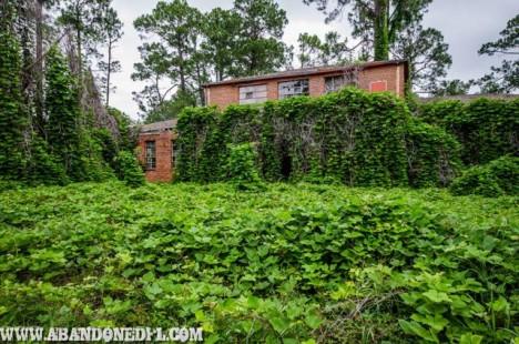 abandoned-florida-10a
