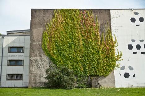 spy wild vines carved