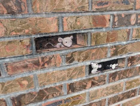 wall mice