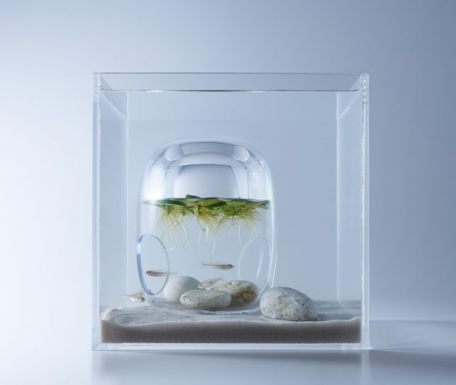 Aquarium Home Decor