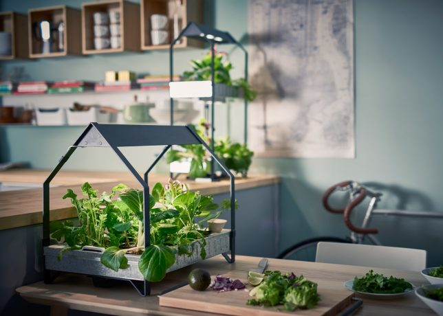 Ikea Indoor Gardens Produce Food Year Round For Homes