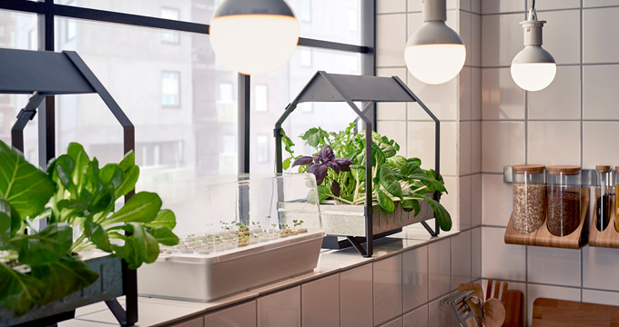 Ikea indoor gardens produce food year round for homes for Indoor gardening machine