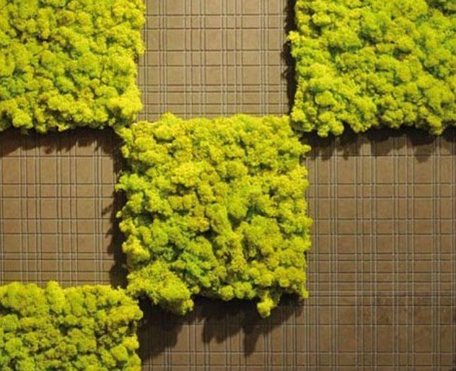 modern tile moss 1