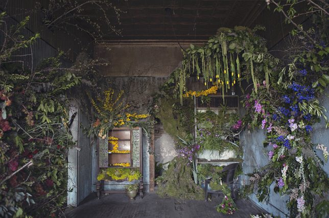 abandoned art flower house
