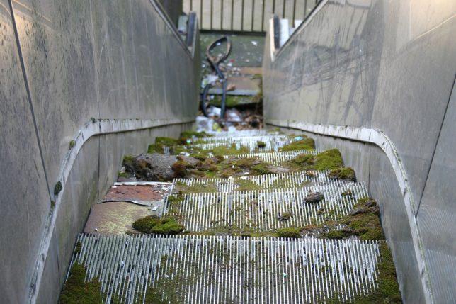 abandoned_escalator_8b