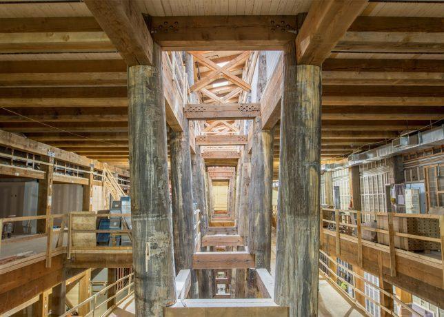 ark interior