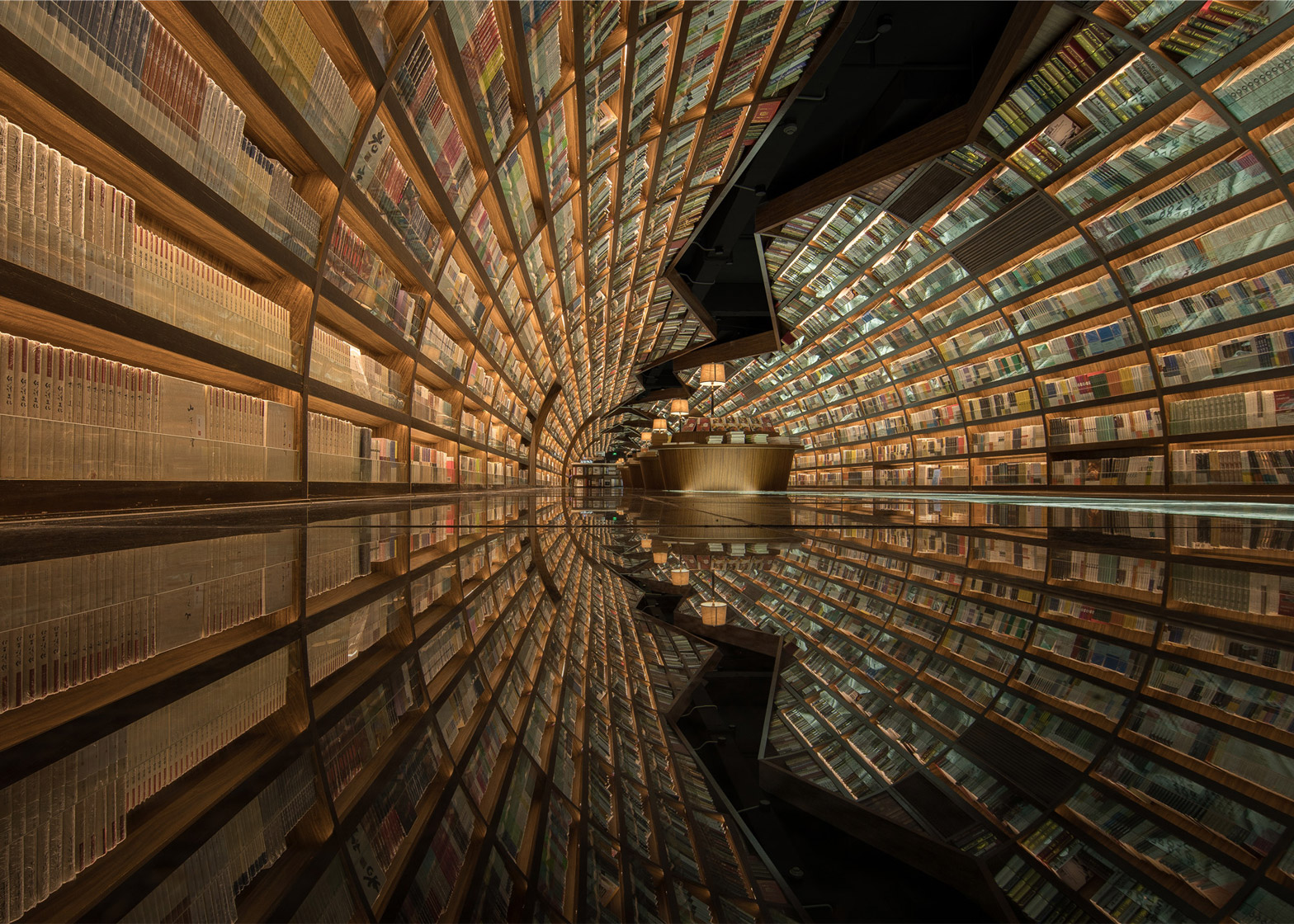 Tunnel of books shelves wrap curved bookstore walls for Interior design and decoration textbook
