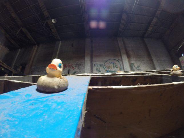 duck-factory-8a