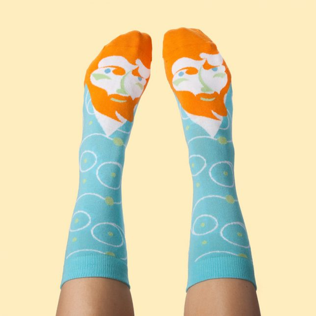 vincent van socks