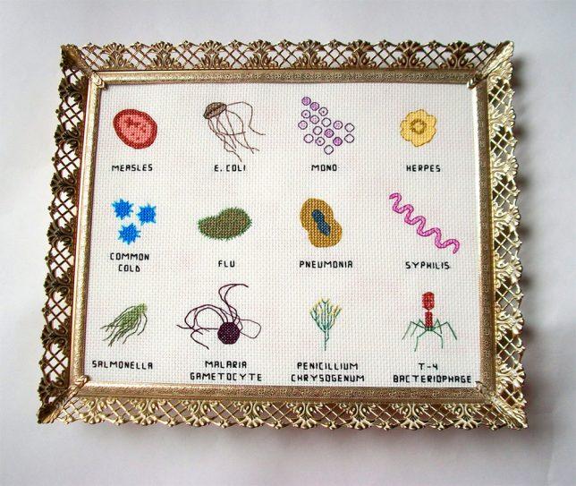 cross-stitch-microbes-3