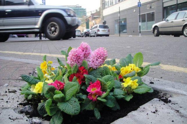 urban hacking pothole gardener 3