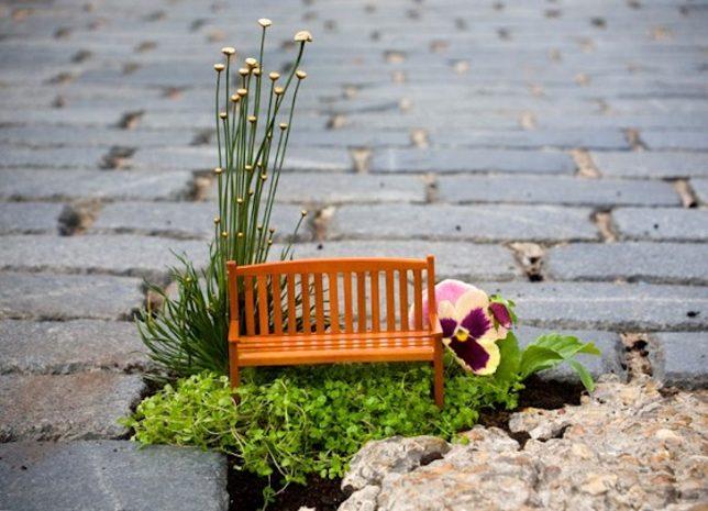 urban hacking pothole gardener