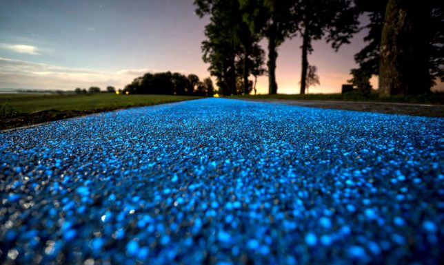 glow-in-the-dark-path