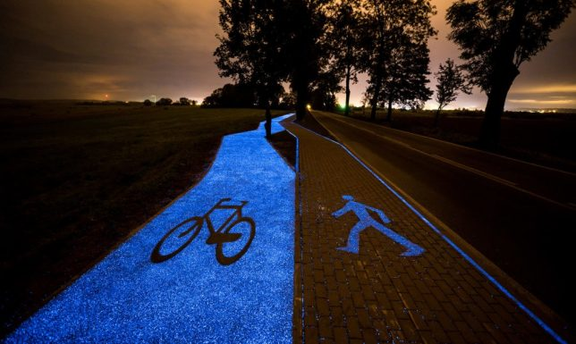 glowing-night-bike-path