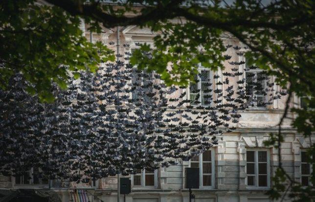 parasitic-art-bats
